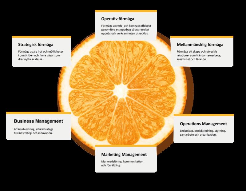 Apelsin i genomskärning och med info rutor